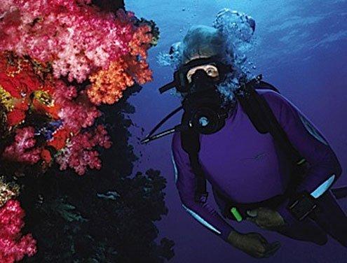 Jean-Michel Cousteau, Italy, tsunami, ecology, Stephanie Gruner