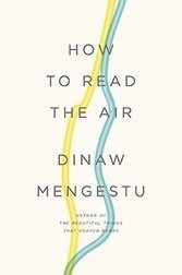 Dinaw Mengestu's self-absorption comes at too high a price in his second novel.